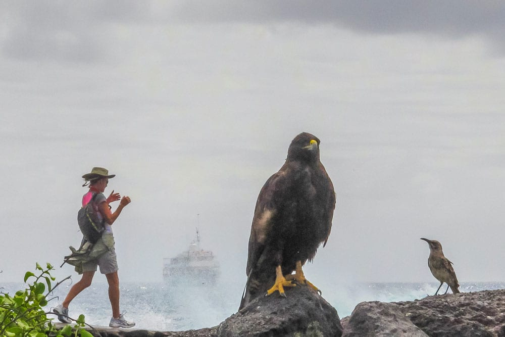tourist on Galapagos
